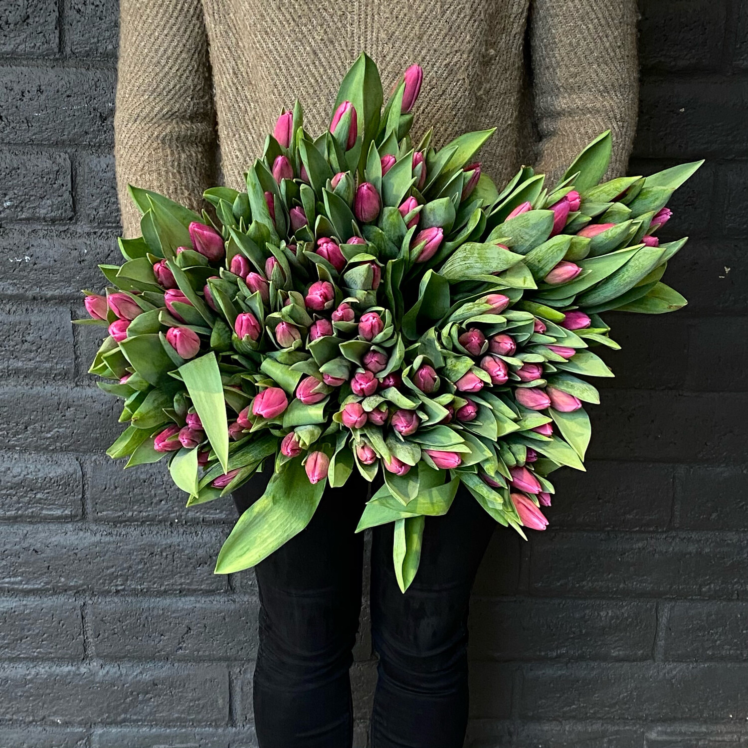 LOCAL TULIPS! LOOSE WRAP