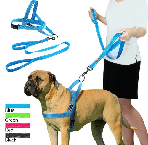 Comfy Dog Harness and lead