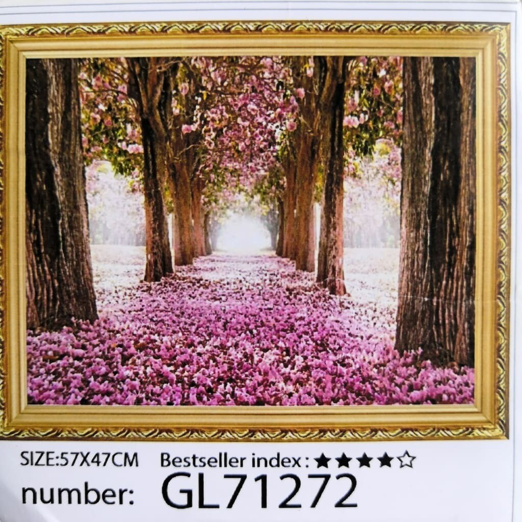 Алмазная мозаика без подрамника 50*40 см GL71272