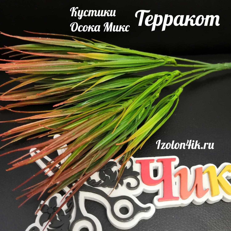 Куст ОСОКА  (Терракот) О-2