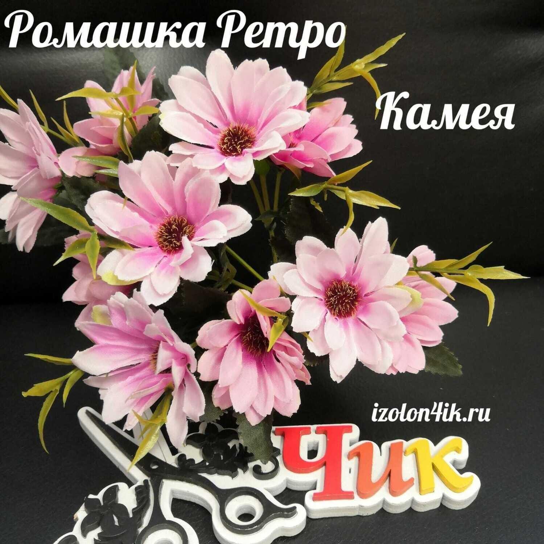 Ромашка РЕТРО букет (Камея) Г-3