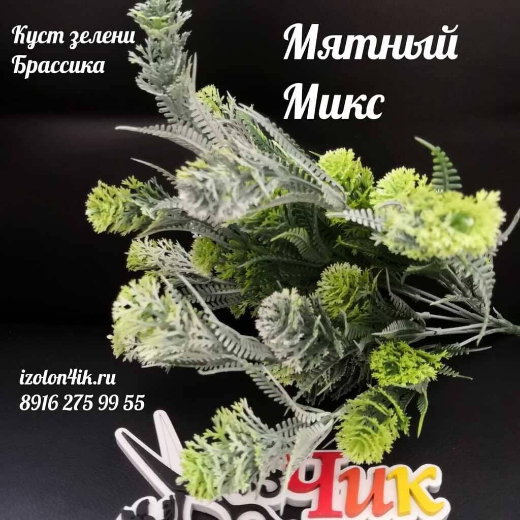 Куст зелени БРАССИКА (Мятный микс) К-2