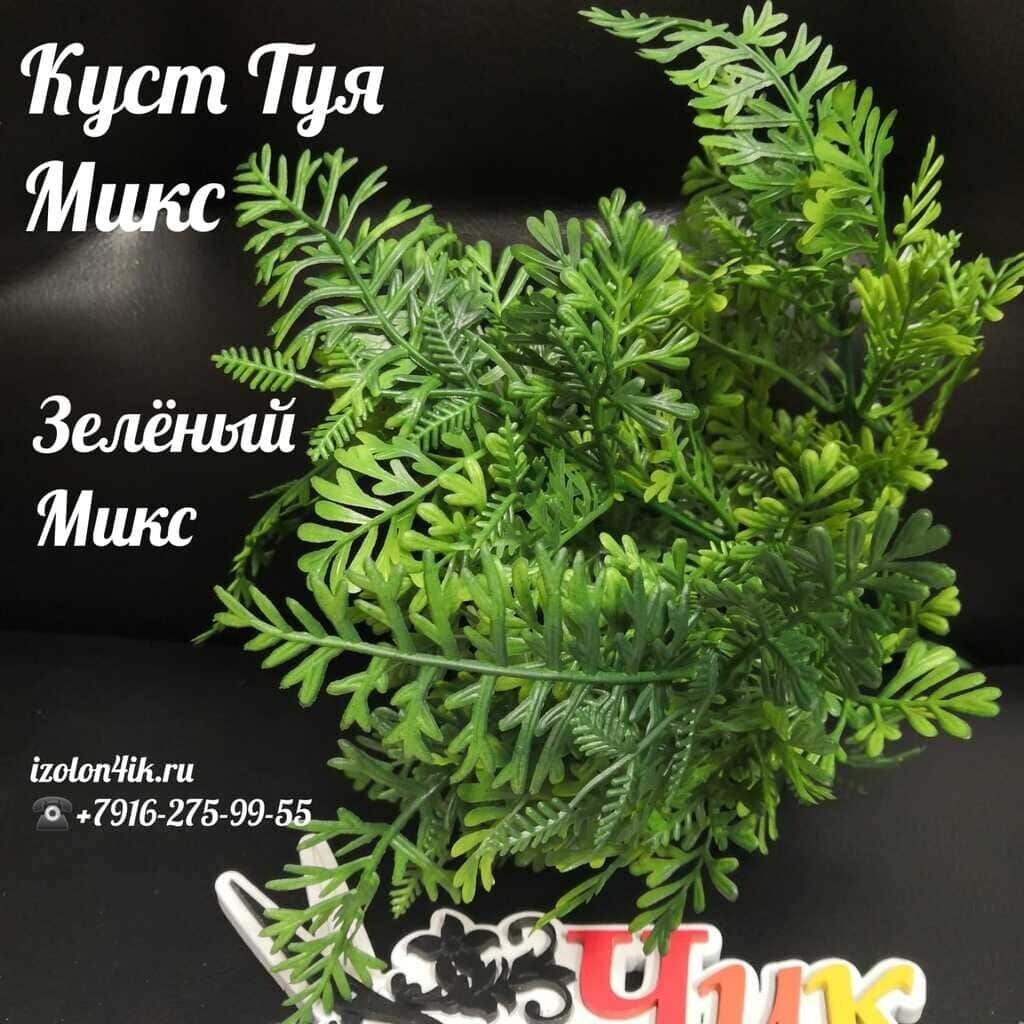 Куст ТУЯ (Зеленый микс) Т-4