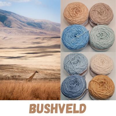 Bushveld Double Knit Palette