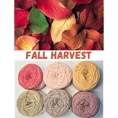 Fall Harvest Double Knit Palette