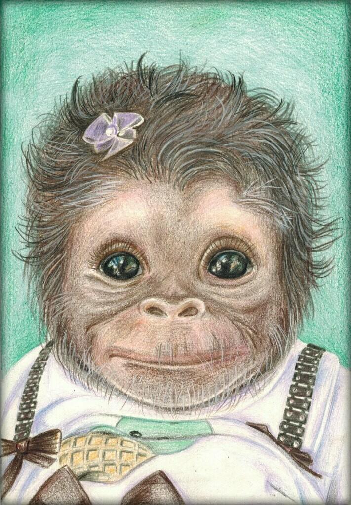 New. Monkey
