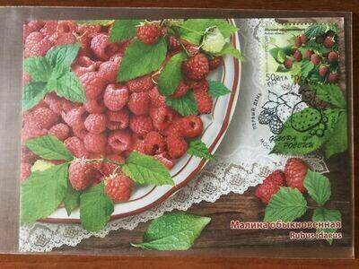 Maximum Сard Russia 2020 raspberry berry
