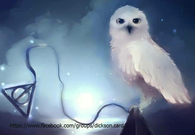 Harry Potter Сова