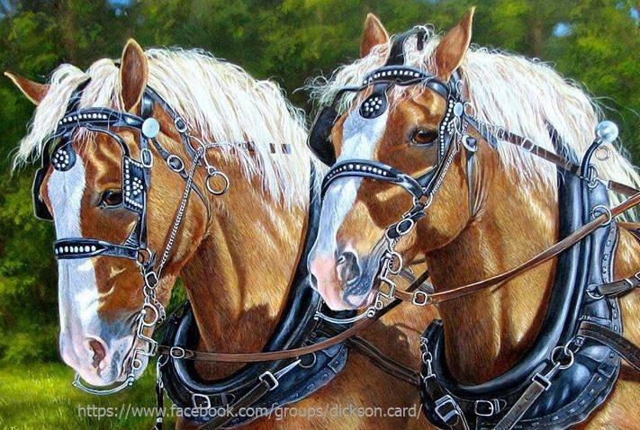 Horse cart.