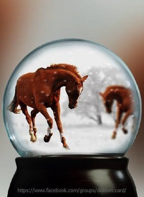 Snow-covered horses in a ball (brown)