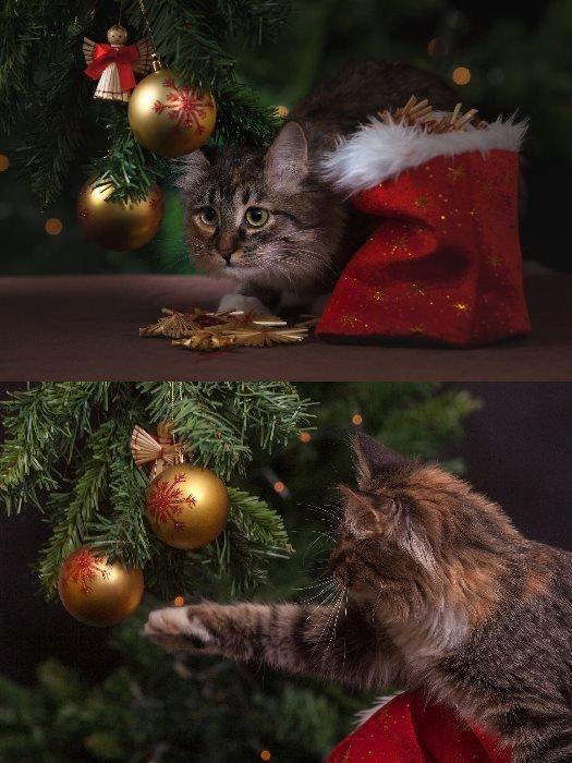 Postcard Christmas collage