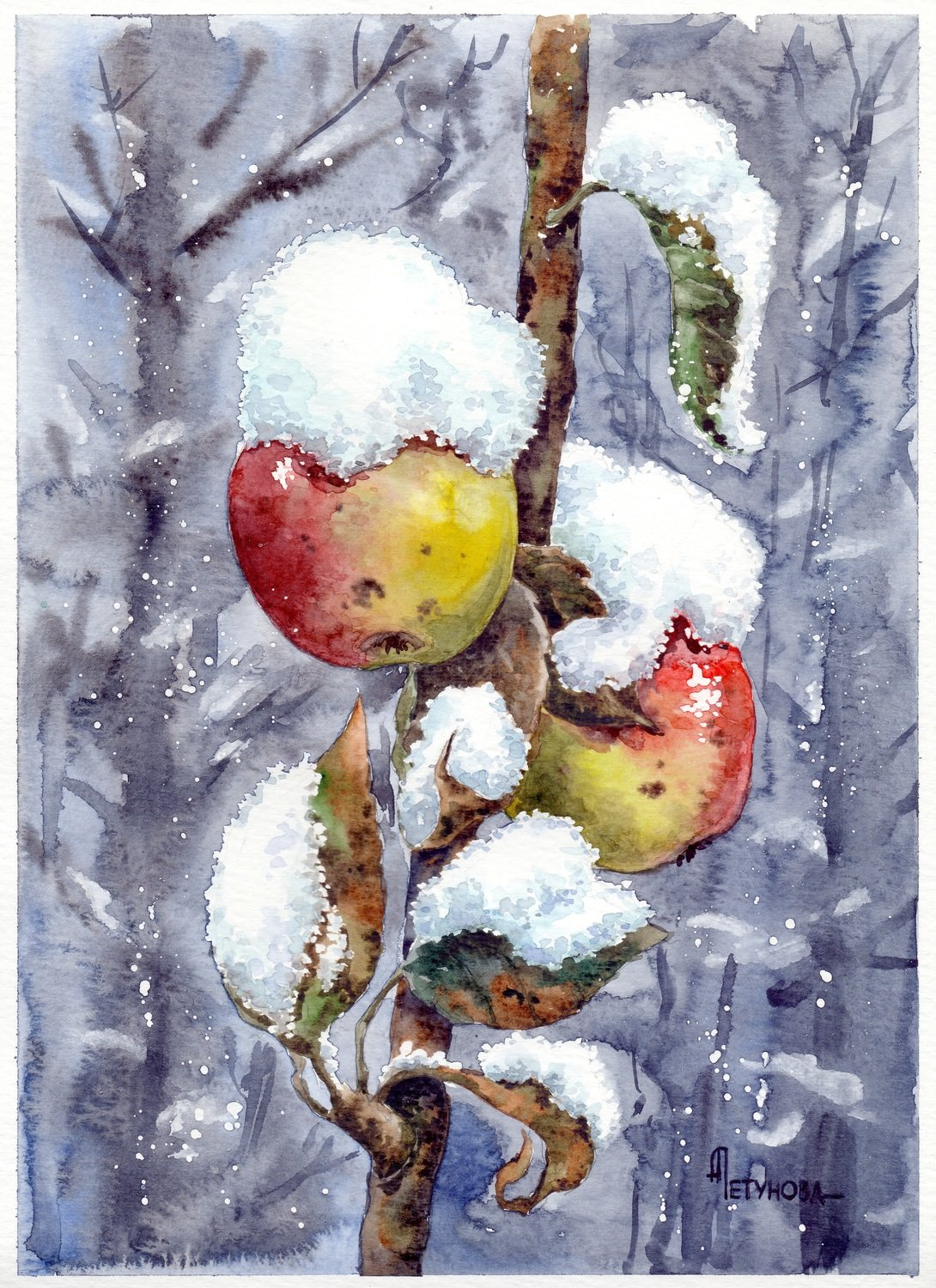 The first snow from © Anna Petunova