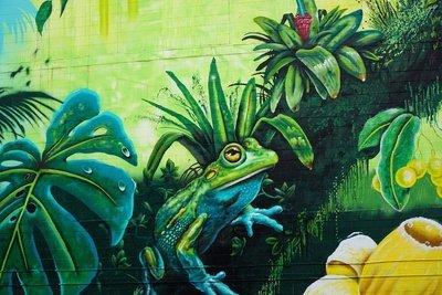 Frog , graffiti