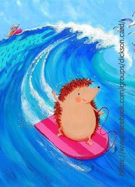 Hedgehog on surfing