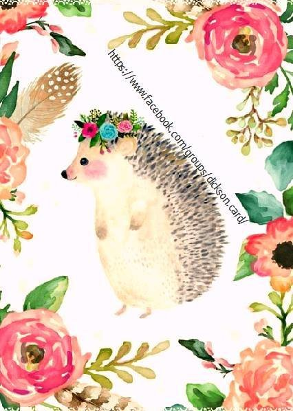 Hedgehog, around the panel of flowers