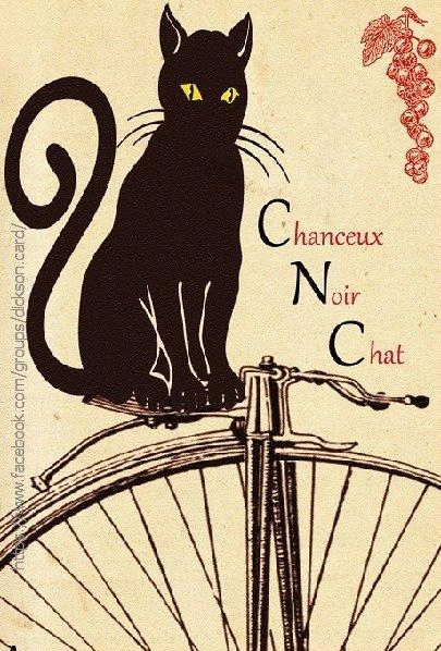 Parisian ⚫️ black 🐱 cat on bicycle