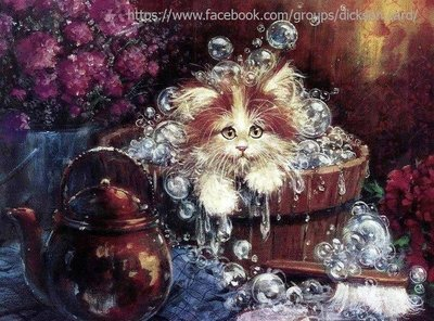 The cat bathes in a tub