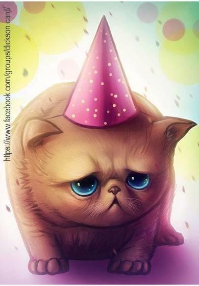 🎉 Kitten's birthday 🎉