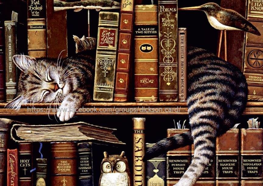 A cat behind the books by © Geoffrey Tristram