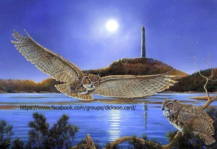 Polar owls Carol Decker