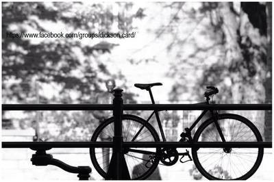 Black / White Bike