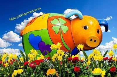 Pig - a symbol of 2019