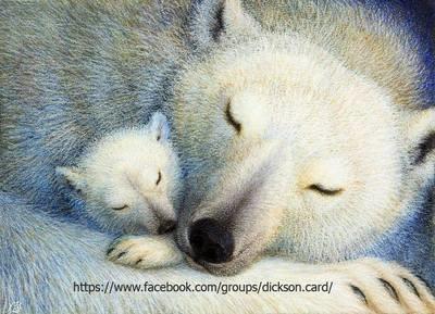 White bear with a teddy bear 🐨