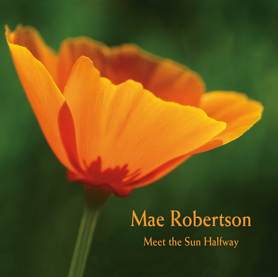 Meet the Sun Halfway (Digital Download)