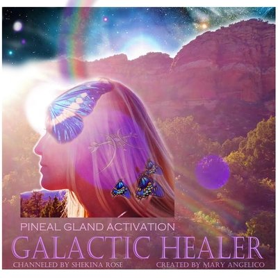Pineal Gland 3rd Eye Stargate Activation and Galactic Healer/Spiritual retreat Sale/$20.00/$55.00