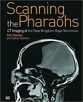 Scanning the Pharaohs