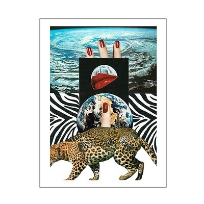 Leopard - A3 Print