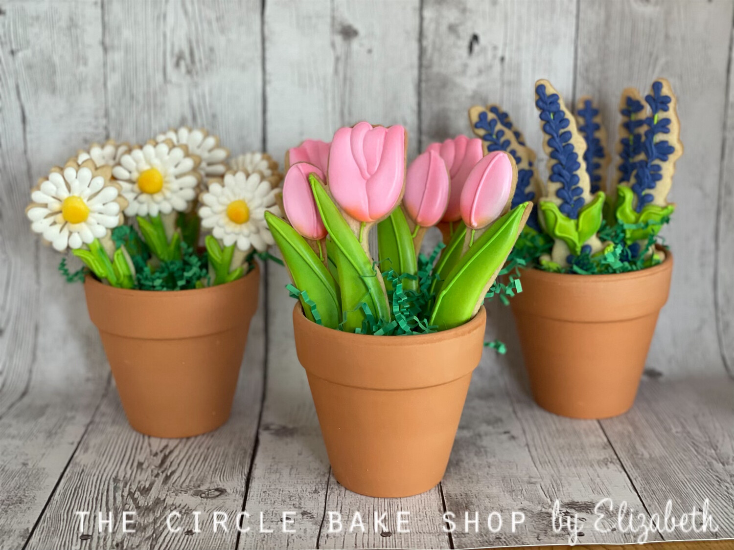 Potted Flower Cookie Bouquets (options available)