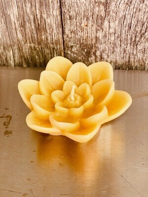 Lily Lotus Flower beeswax candle