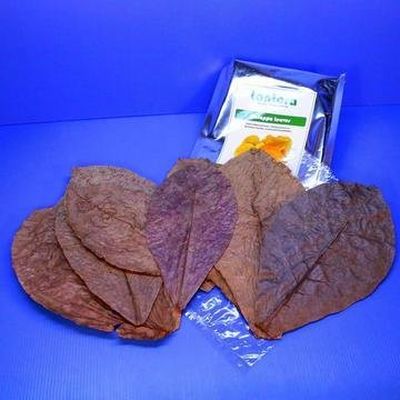Cattapa leaves 00005