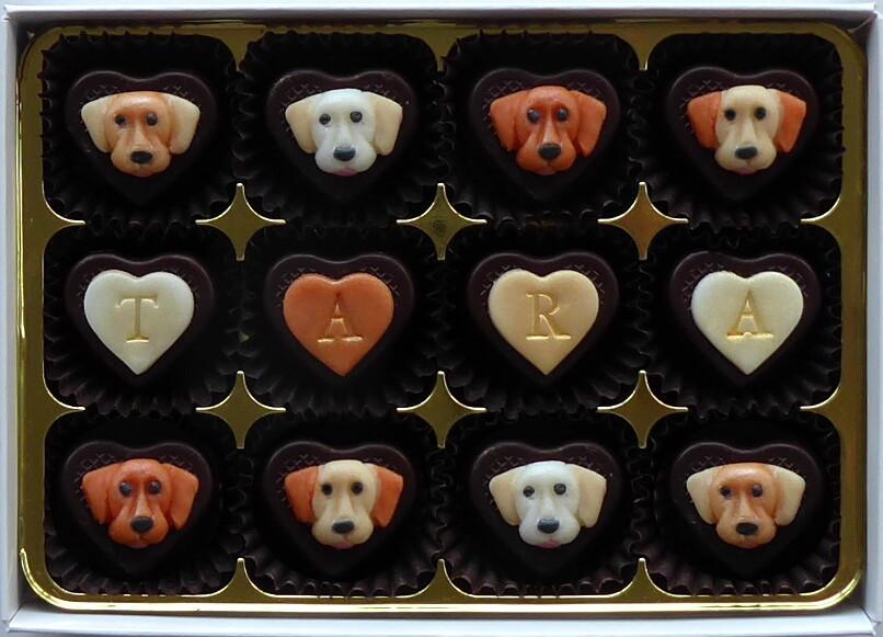 Lovely Labradors