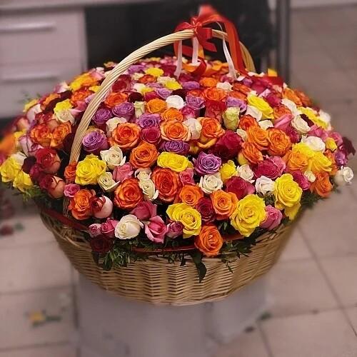 301 кенийская роза в корзине