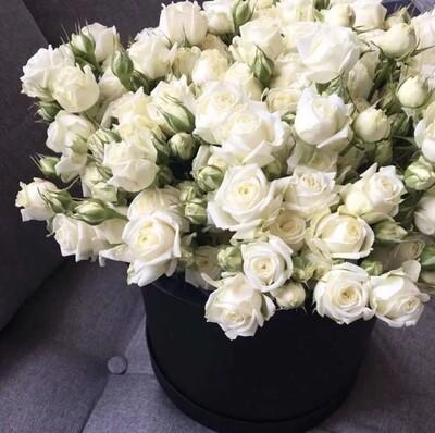 Аквабокс белых кустовых роз