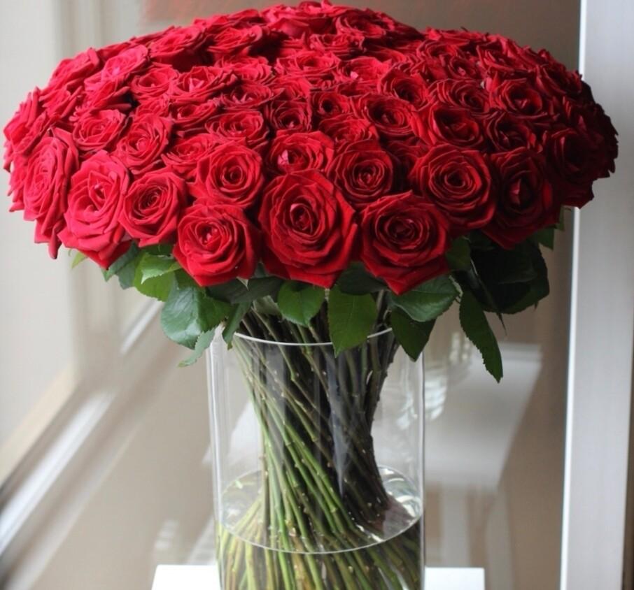 101 роза в вазе