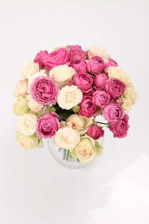 Пионовидная букетная роза