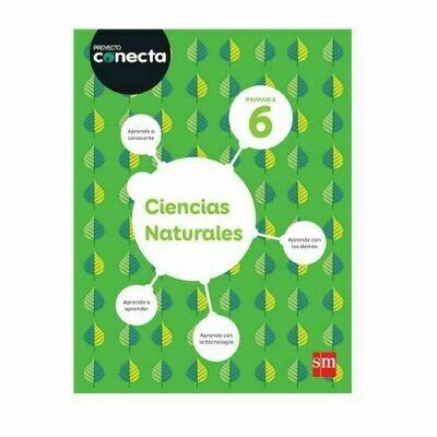 Ciencias Naturales 6 (Digital). Blink. Proyecto Conecta. Primaria. SM