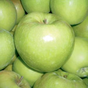 Apple Trees Granny Smith