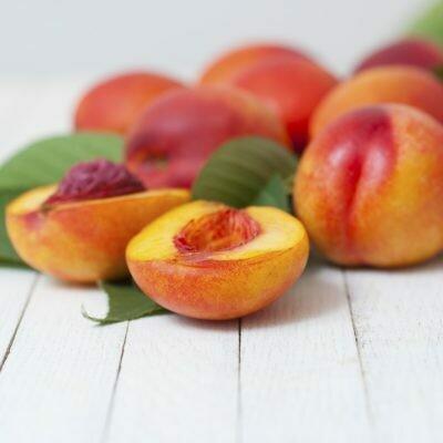 Nectarine Tree Dwarf Flavortop
