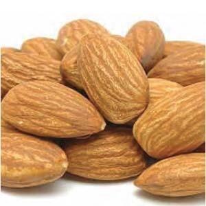Almond Trees Dwarf