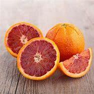 Orange Tree Blood Orange