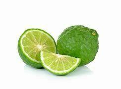 Lime Tree Dwarf Kaffir