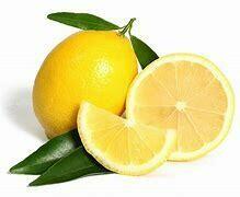 Lemon Tree Lisbon