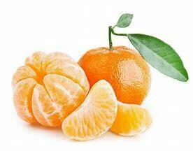 Mandarin Tree Dwarf Imperial