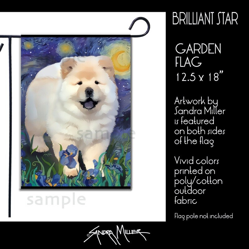 BRILLIANT STAR Art Flags in 2 sizes