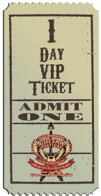 1 Day VIP Ticket