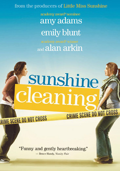 Sunshine Cleaning - DVD - Used